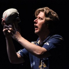 "Theater review: ""Gary Busey's One-Man 'Hamlet'"" in Colorado Springs is laugh-out-loud funny"