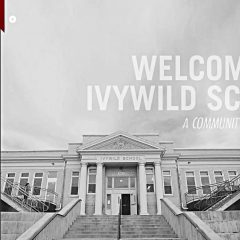 Ivywild School & Neighborhood