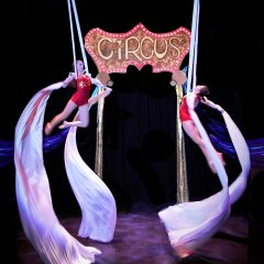 The Incredible Circus Millibo! May 5-20